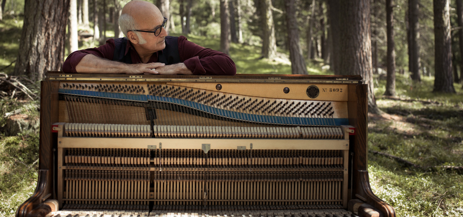 Людовико Эйнауди 2.0. Simple Music Ensemble. Концерт в оранжерее фото